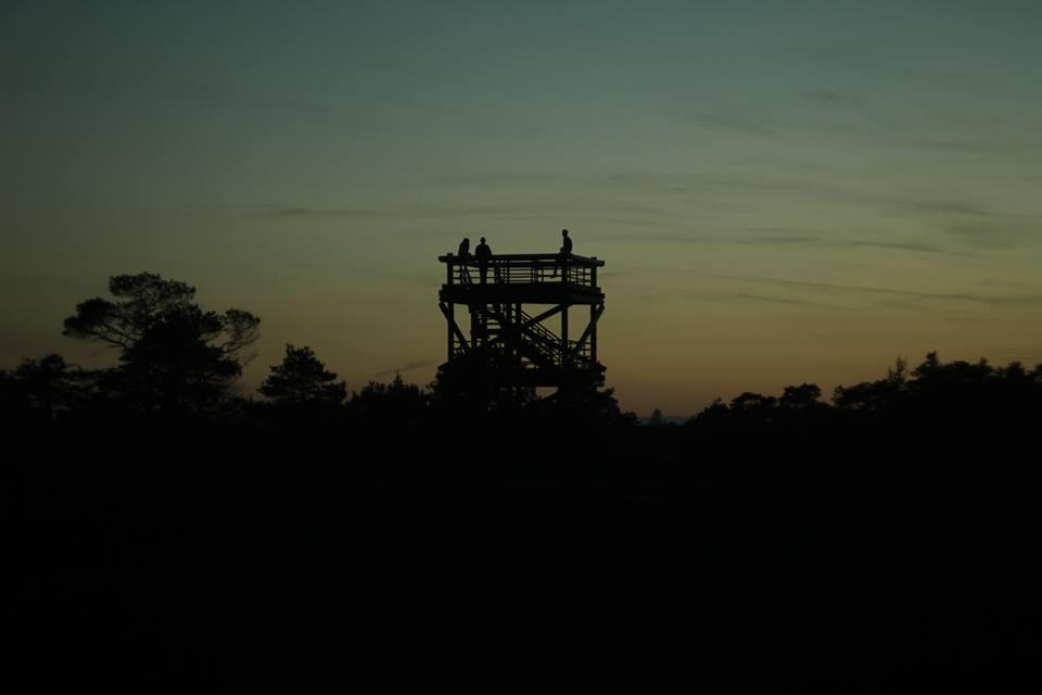 Ķemeru skatu tornis vakarā. Autore: Inga Tauriņa